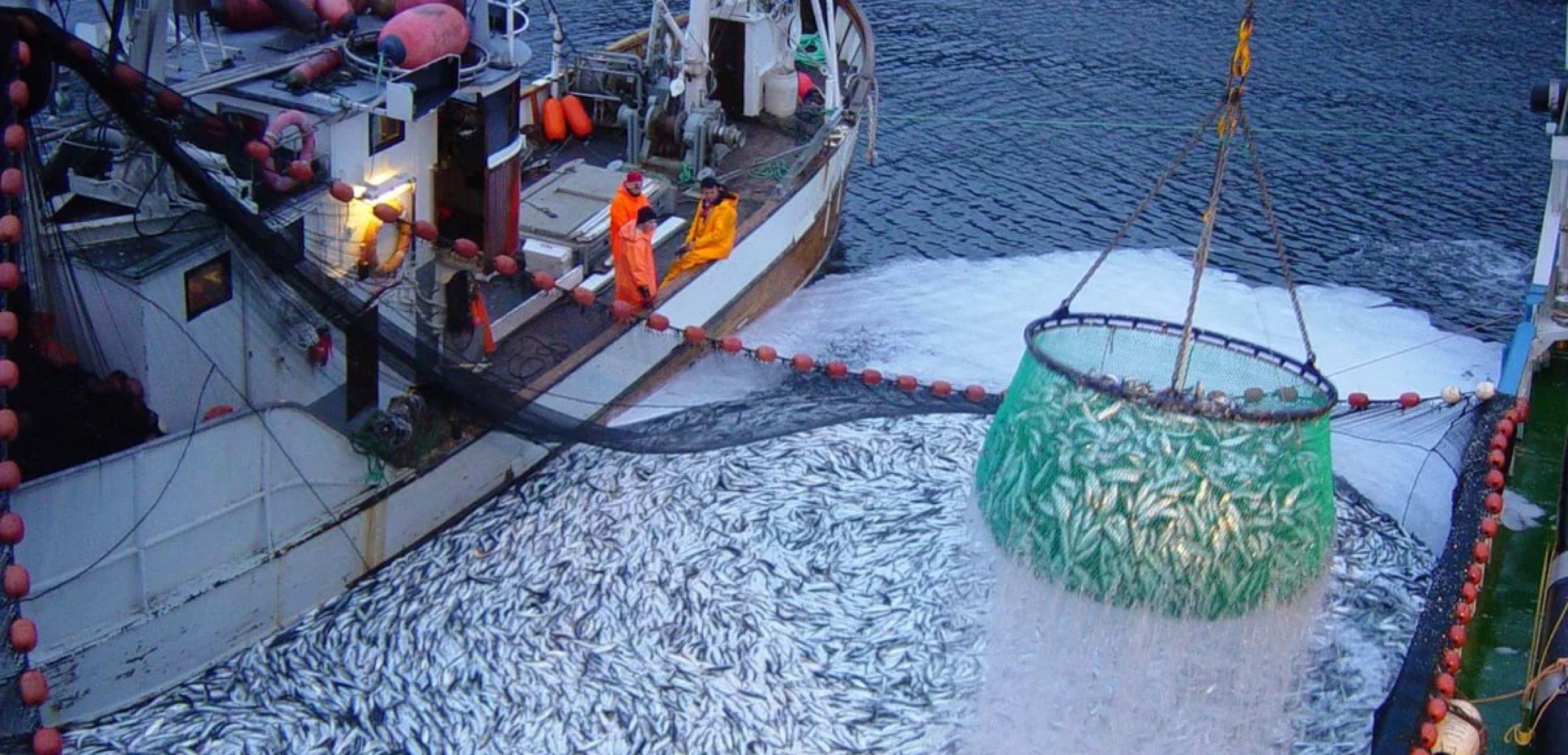 Ассоциация рыбохозяйственных предприятий Приморья